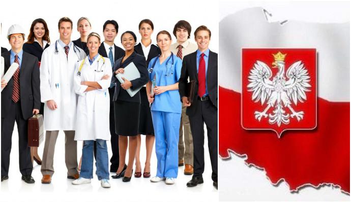 Основные виды работ для иностранцев с образованием
